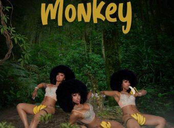 monkey2-1-scaled.jpg